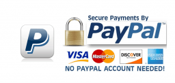 Don't Have a PayPal Account? No Problem!